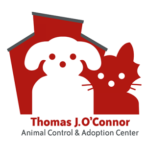 thomas-oconnor